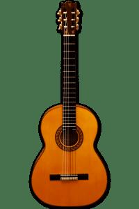 Guitarra Garrido Pozuelo Zalamea