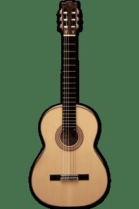 Guitarra rocio frente