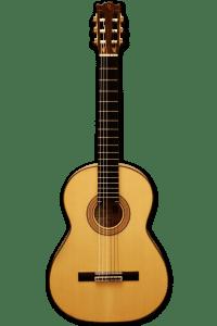 guitarra rocio