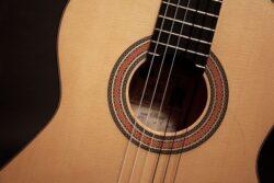 detail guitar strings and pickguard