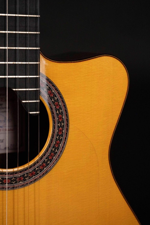 Cutaway guitar model Zambra detail rossete