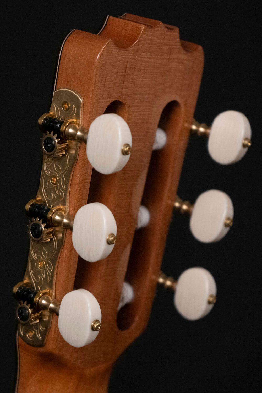 Cutaway guitar model Zambra back headstock