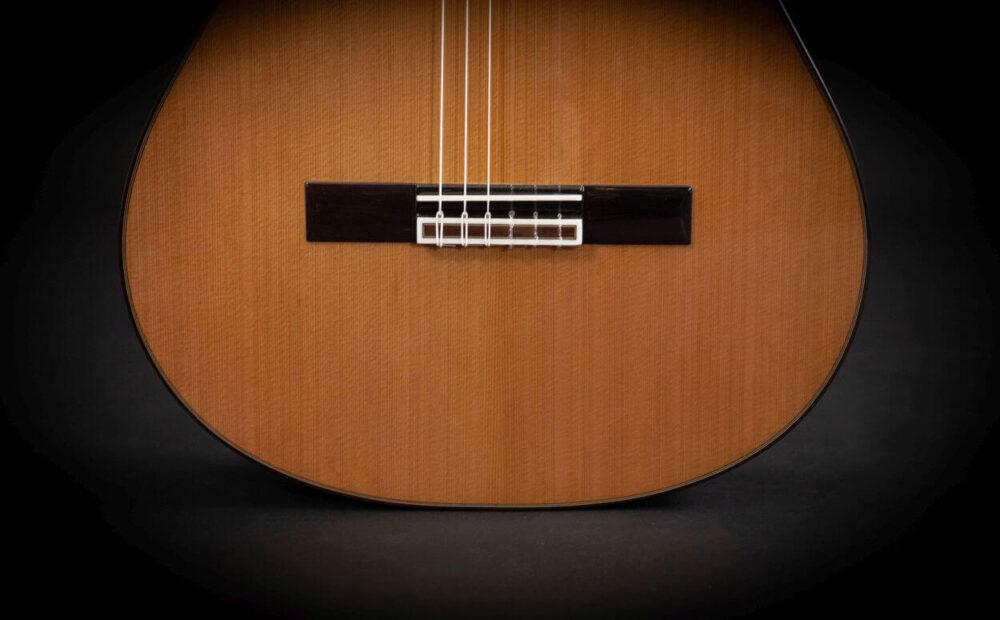 Spanish guitar Albeniz (13)