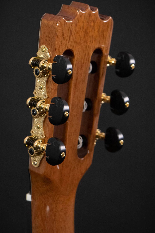 Spanish guitar Albeniz (2)