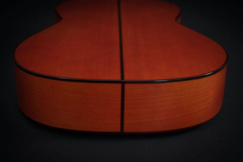 flamenco guitar alegria (11)