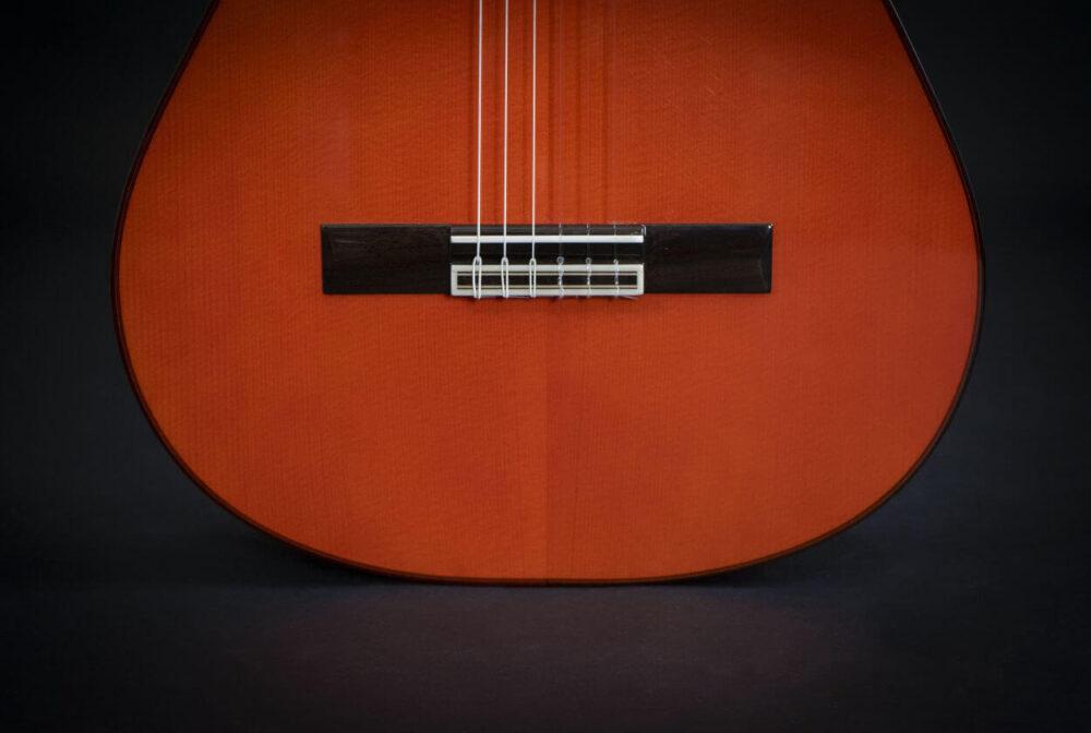 flamenco guitar black alegria (16)