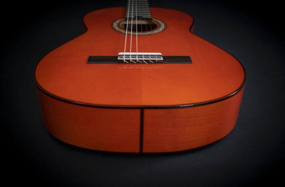 flamenco guitar alegria (17)