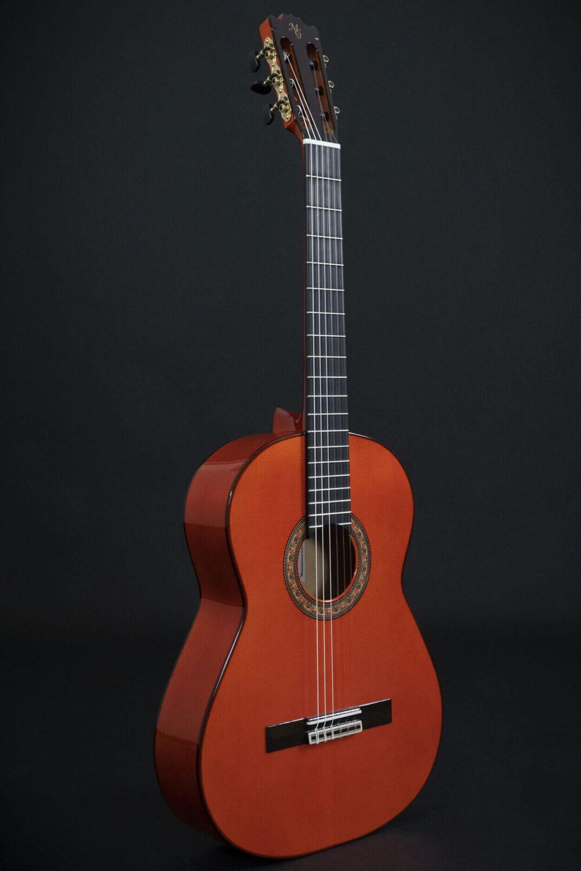 flamenco guitar alegria (2)