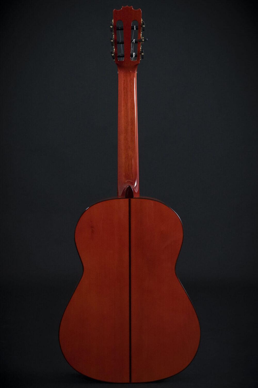 flamenco guitar alegria (3)