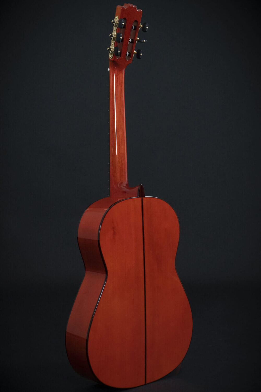 flamenco guitar alegria (4)