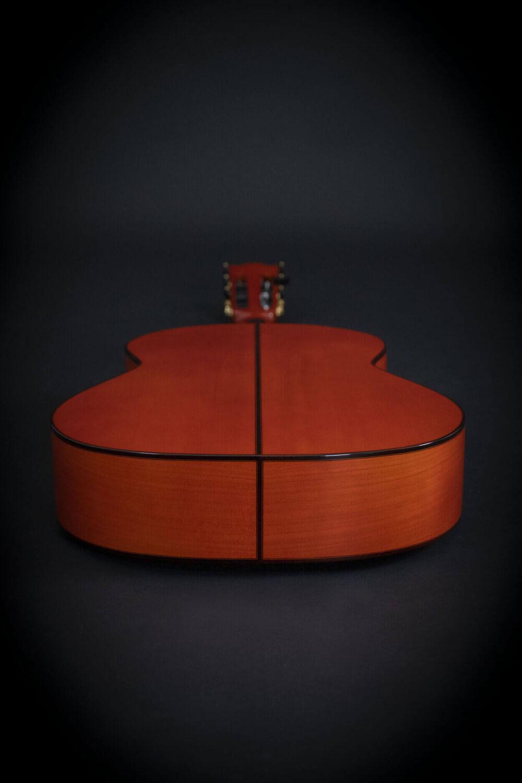 flamenco guitar alegria (8)