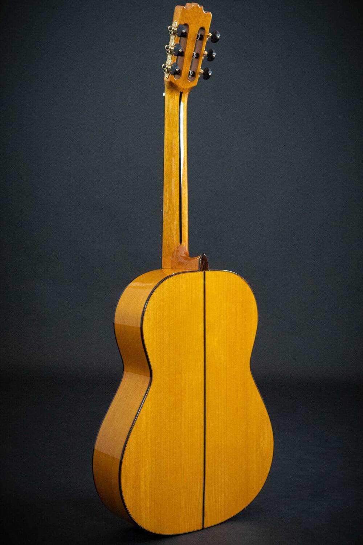 flamenco guitar Alzapua (3)