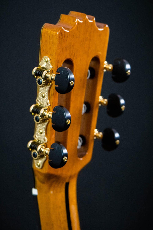flamenco guitar Alzapua  (6)