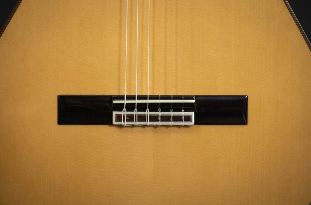 Spanish guitar Aranjuez (14)