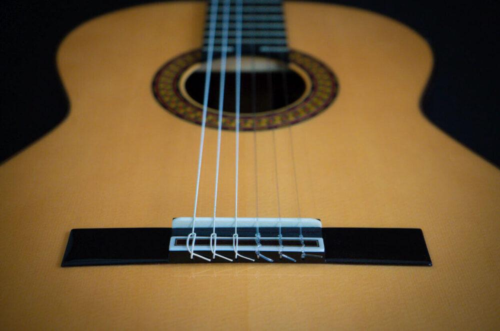 Spanish guitar Aranjuez (18)