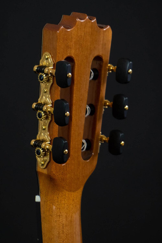 Spanish guitar Aranjuez (6)