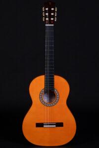 flamenco guitar model Zalamea